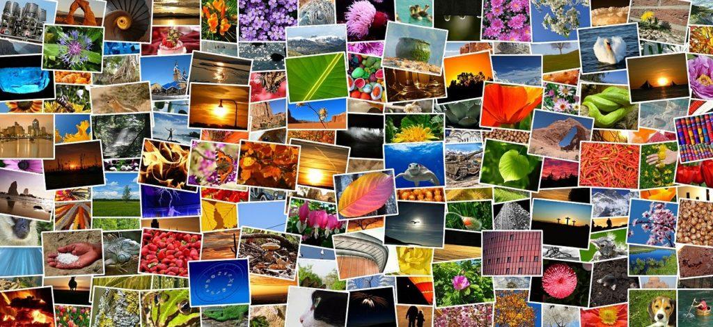 Bilder finden, Bilder online suchen, Bilder für Website, freier Bilder download